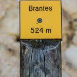 Brantes22-1