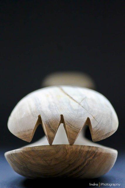 houten-lepels